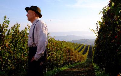 From the Vine Came The Grape comes Sean Cisterna's latest feature